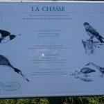 Les Oiseaux au Val Joly